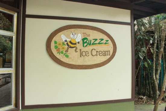 Bohol Bee Farm: ice cream parlour