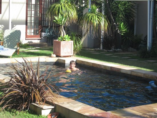 Beachwalk Bed and Breakfast: Gorgeous pool area