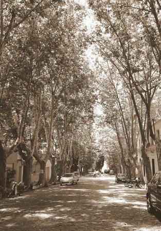 Don Antonio Posada: La calle del hotel