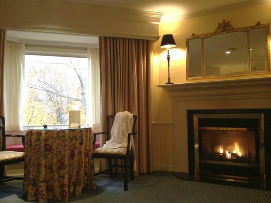 The Orchards Hotel : Room with a view and fireplace!