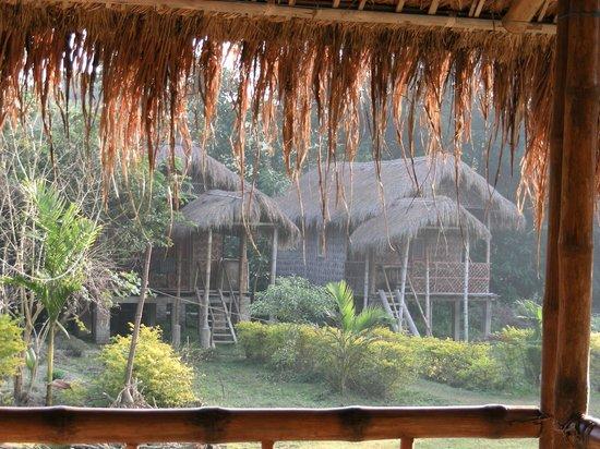 Majuli, India: Dalla veranda