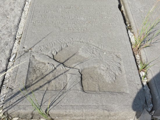 Beit Hayim Cemetery: Tree of Life being cut - this person died before age 50