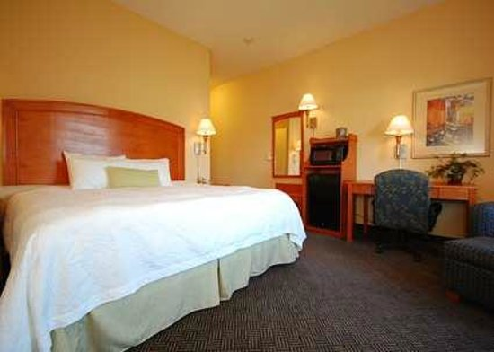 Hampton Inn Grand Island: Enjoy our spacious guest room with one king bed