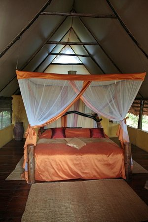 Kikoti Safari Camp: Room