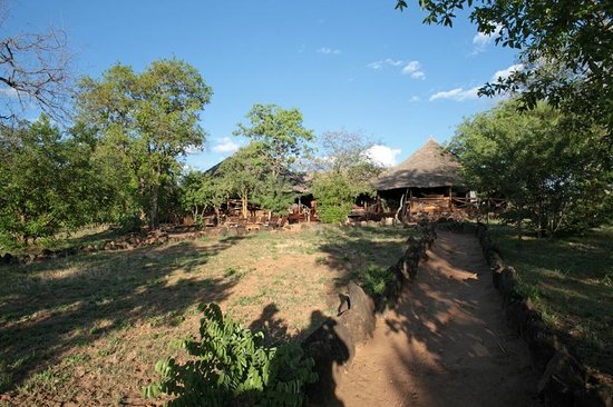 Kikoti Safari Camp: The reception/bar/restaurant (view walking from room)