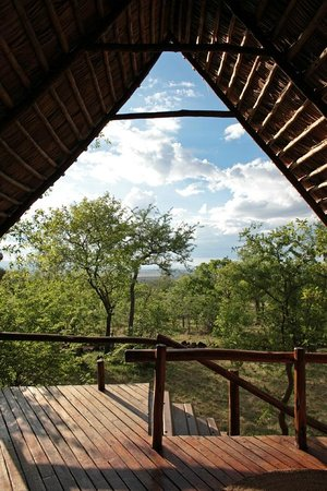 Kikoti Safari Camp: View from room