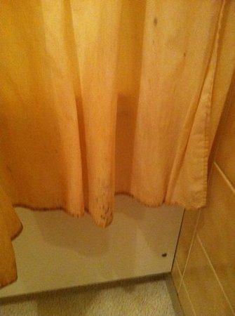 Hotel Lanoiselee : rideau de douche sale...