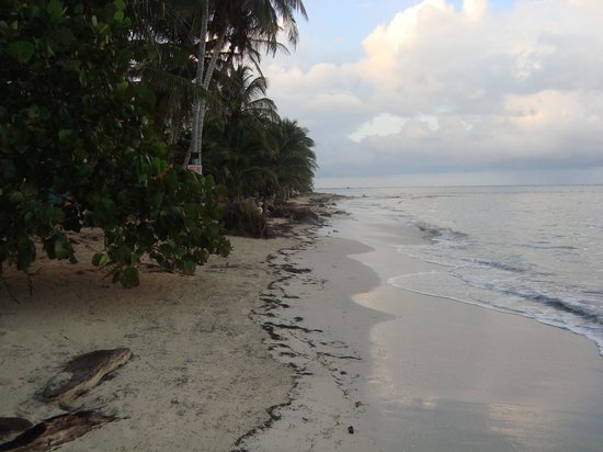 Little Corn Beach and Bungalow: Cocal Beach - LCBB