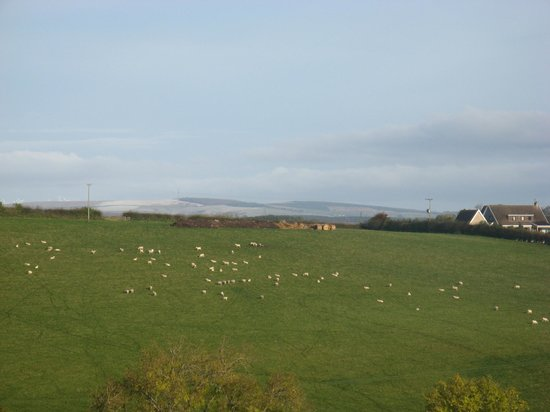 Hendersyde Farm Cottages: View from one of the bedrooms