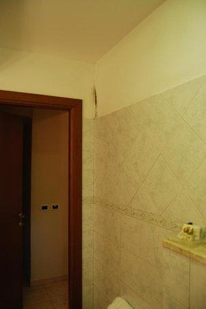 Hotel Villa Accini: bathroom mold