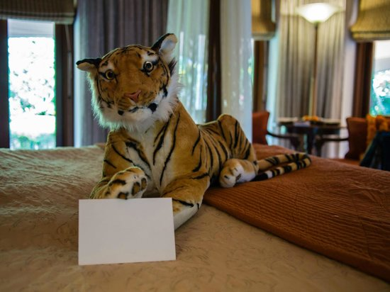 The Oberoi Vanyavilas: Stuffed tiger frightened our friends
