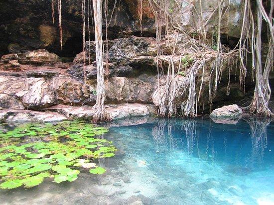 Cenote X Batun: Cenote #2