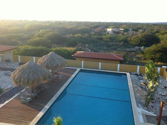 Wanapa Lodge: heerlijk zwembad