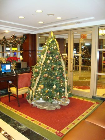 Skyline Hotel: Christmas tree in foyer