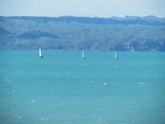 Harbour View Lodge: excellent view