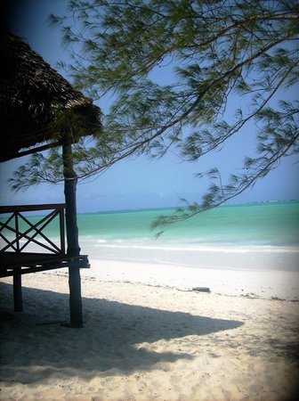 Ndame Beach Lodge Zanzibar: The beach!