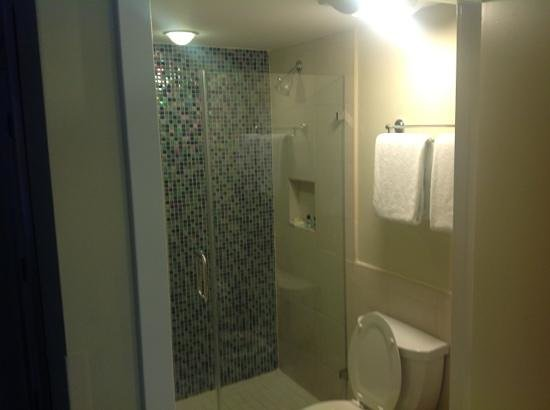 Silver Palms Inn: clean shower