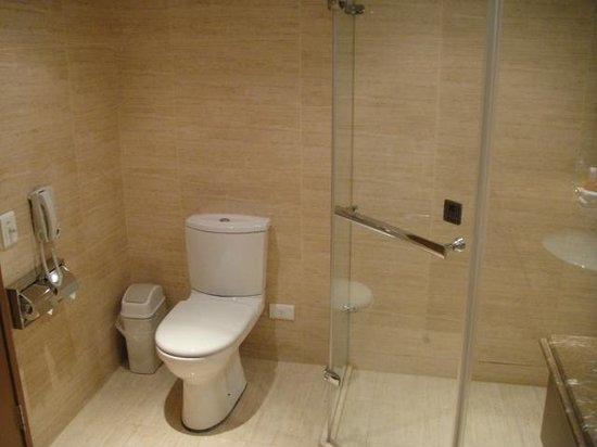 Hotel Kuva Chateau: Toilet and shower stall