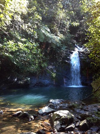 Coconut Row Guest House : Waterfalls at Cockscomb Jaguar Reserve