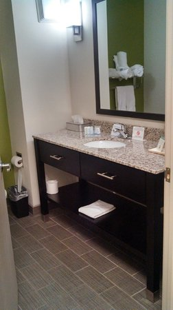 Sleep Inn & Suites Harbour Pointe: Bathroom vanity