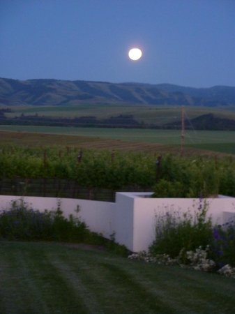 Walla Faces Inns at the Vineyard : Moon low over the Blue Mountains