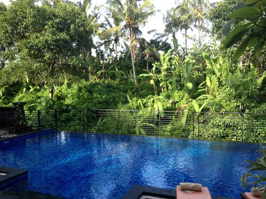 Pondok Pundi Village Inn & Spa: View from poolside