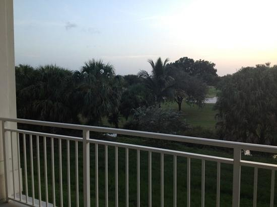 Provident Doral at The Blue Miami: View from room