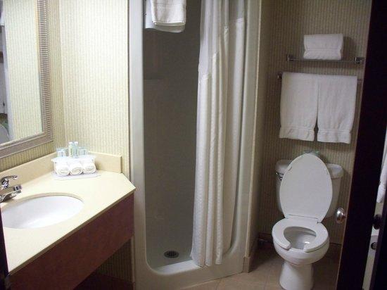 Best Western Okemos/East Lansing Hotel U0026 Suites: Our Bathroom. Super Tiny  Corner