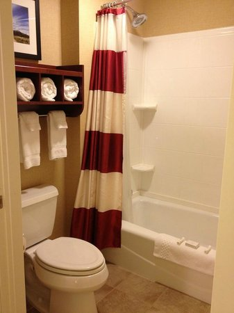 Residence Inn Helena: Bathroom
