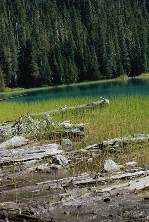 Pemberton, Canada: view of first Joffre Lake!