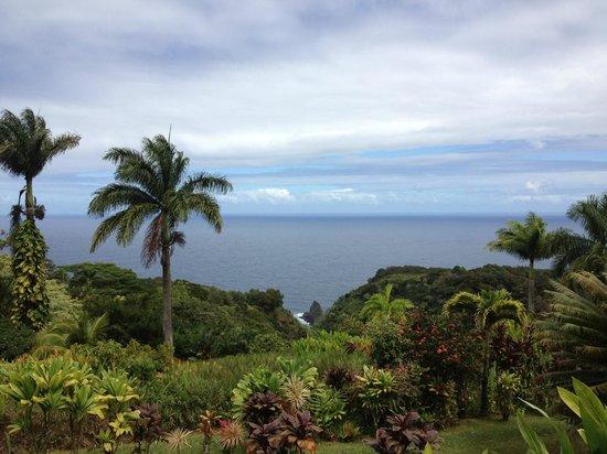 Garden Of Eden Arboretum U0026 Botanical Garden: Maui Garden Of Eden   Botanical  Gardens U0026