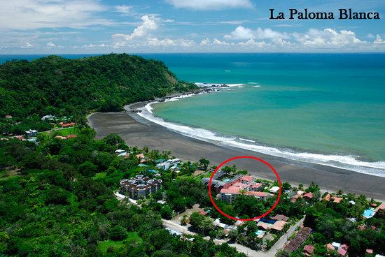 La Paloma Blanca: Beachfront
