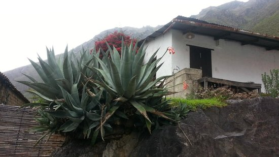 ‪‪El Albergue Ollantaytambo‬: View from the garden