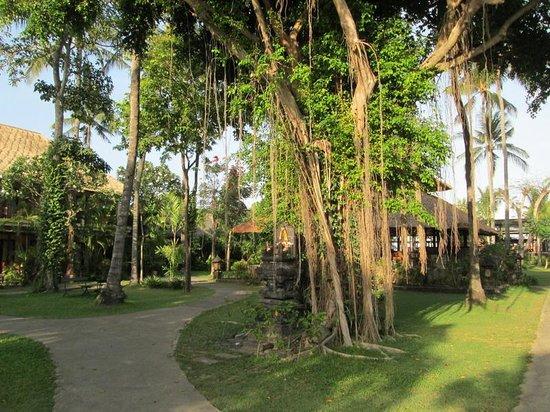 Hotel Santika Premiere Beach Resort Bali: Hotel Garden 2