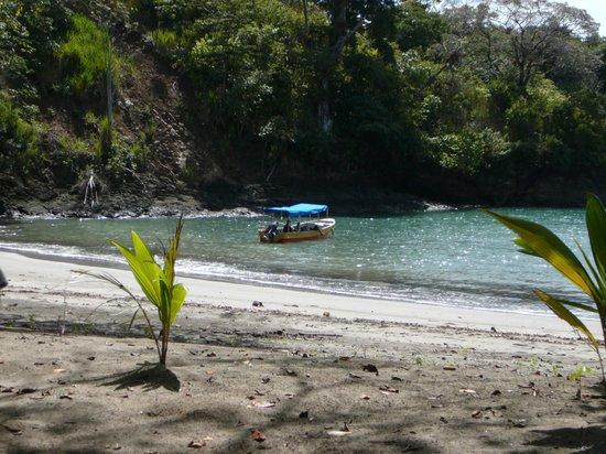 David, Panama: playa con kibutz de rita