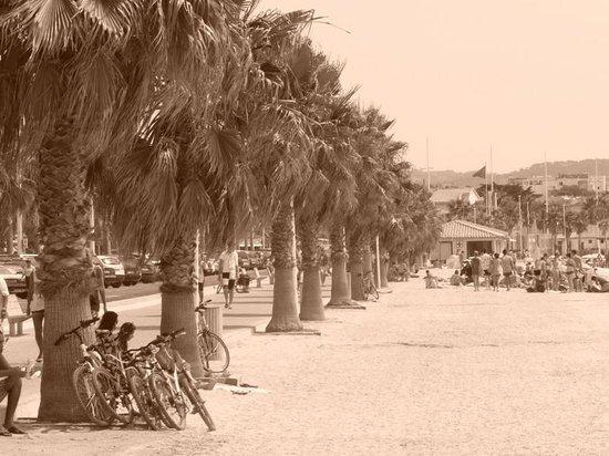 Adonis Sanary Hôtel des Bains : nearby beach