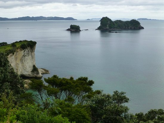 Hahei Horizon Bed & Breakfast : walk to Cathedral Cove