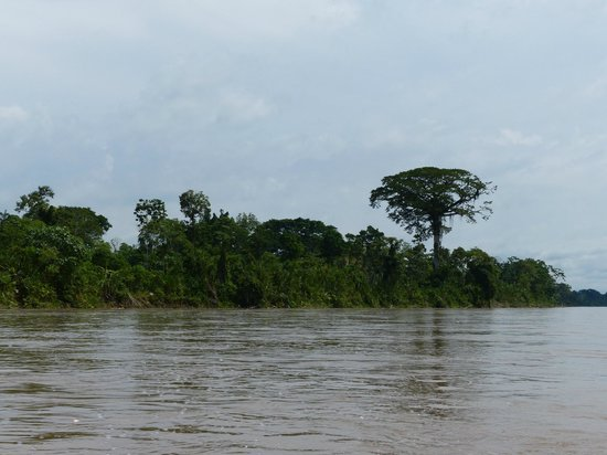 La Selva Amazon Ecolodge: Rio Napo