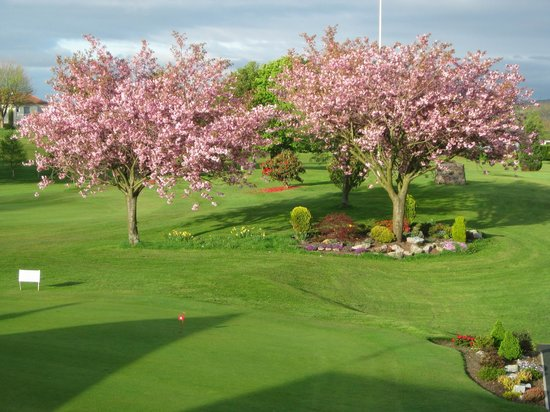 Cathcart Castle Golf Club: View from the putting green