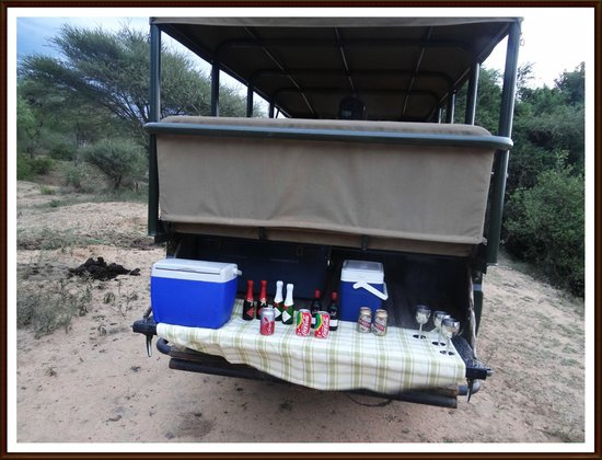 Elandela Private Game Reserve: MY HIGHLIGHT WAS HAVING A PIC NIC IN THE BUSH!
