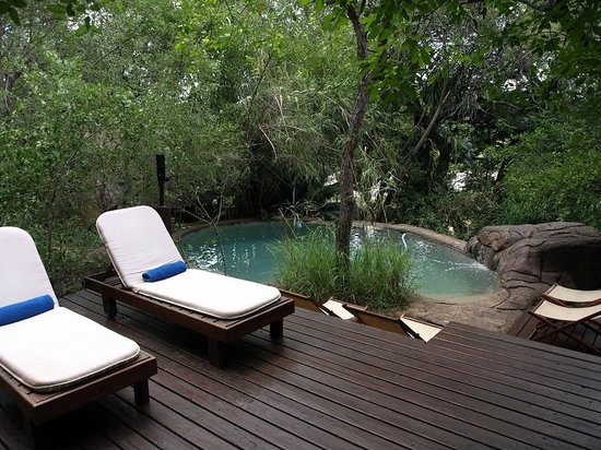 Pondoro Game Lodge: Pool
