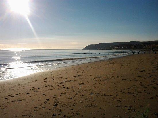 The Bernay : Sandown beach December 2012