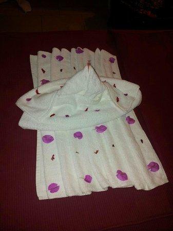 Jaz Mirabel Club: towel art