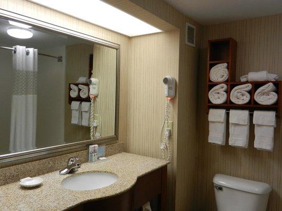 Hampton Inn Dayton/Huber Heights : bathroom