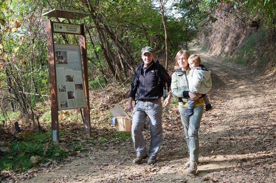 Ecomuseo delle Rocche del Roero: Escursioni sui sentieri delle Rocche del Roero