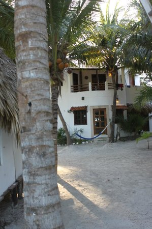 Casa Iguana Holbox: La habitacion de el dueño abajo y las tres habitaciones perfectas