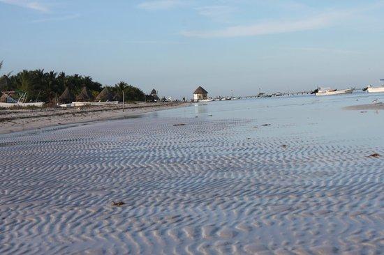 Casa Iguana Holbox: Por las mañanas al bajar la marea, el mar se reatrae aun mas un espectaculo maravilloso.
