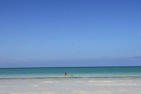 Casa Iguana Holbox: La vista es preciosa, es un azul turquesa que solo en Holbox se puede apreciar asi