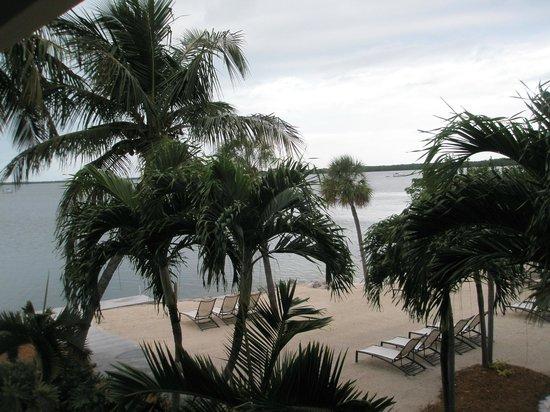 Hampton Inn Key Largo: view of water