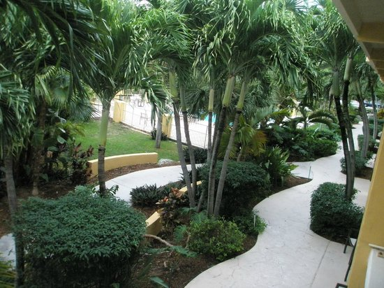 Hampton Inn Key Largo: pool area